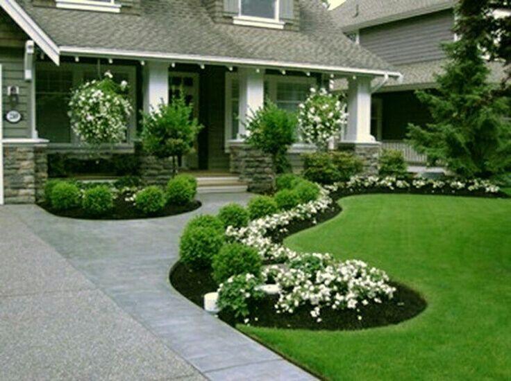 شركة تنظيف وتنسيق حدائق بحائل